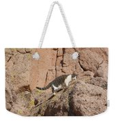 Pierre The Mountain Climber Weekender Tote Bag