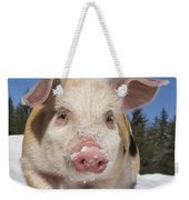 Piglet Walking In The Snow Weekender Tote Bag