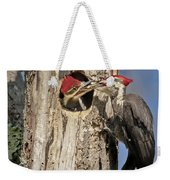 Pileated Woodpecker And Chick Weekender Tote Bag