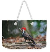 Pileated Woodpecker On Log Weekender Tote Bag