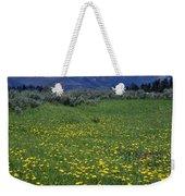 1a9210-pilot Peak And Wildflowers Weekender Tote Bag