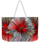 Pinache 1 Weekender Tote Bag by Angelina Vick