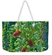 Pine Cones On Spruce Tree In Rancheria Falls Recreation Site-yt Weekender Tote Bag