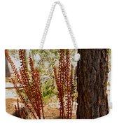 Pine Drops And Ponderosa Pine In Des Chutes Nf-or  Weekender Tote Bag
