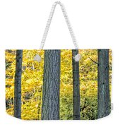 Pine Forest In The Autumn Weekender Tote Bag