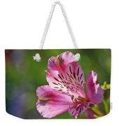 Pink Alstroemeria Flower Weekender Tote Bag