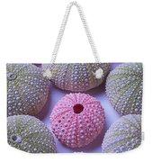 Pink And Green Urchins Weekender Tote Bag