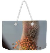 Pink And Grey Pussy Willow In Bloom Weekender Tote Bag
