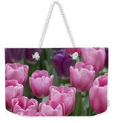 Pink And Purple Dutch Tulips Weekender Tote Bag