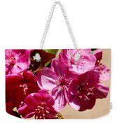 Bee Flying Pink Blossoms 031015a Weekender Tote Bag