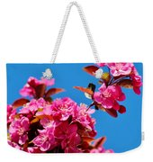 Pink Blossoms Blue Sky 031015a Weekender Tote Bag