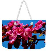 Pink Blossoms Closeup 031015a Weekender Tote Bag