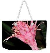 Pink Bromeliad Bloom - Close Up Weekender Tote Bag by Kaye Menner