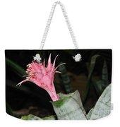 Pink Bromeliad Bloom Weekender Tote Bag by Kaye Menner