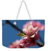 Pink Cherry Tree Blossom Weekender Tote Bag