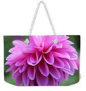 Pink Dahlia Closeup Weekender Tote Bag