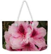 Pink Flowers In Spring Weekender Tote Bag