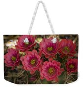 Pink Hedgehog Cactus Flowers  Weekender Tote Bag