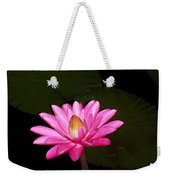 Pink Lilies And Pads Weekender Tote Bag