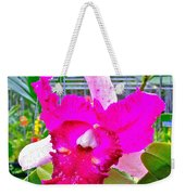 Pink Orchid At Maerim Orchid Farm In Chiang Mai-thailand Weekender Tote Bag