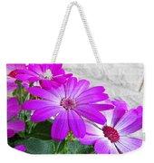 Pink Perciallis Ragwort Flower Art Prints Weekender Tote Bag