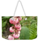 Pink Pyrola On Alpine Tundra Trail By Eielsen Visitor's Center In Denali Np-ak Weekender Tote Bag