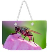 Pink Reflection On Flies Body. Weekender Tote Bag