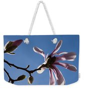 Pink Spring - Blue Sky And Magnolia Blossoms Weekender Tote Bag