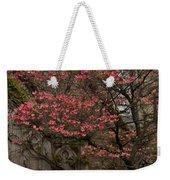 Pink Spring - Dogwood Filigree And Lace Weekender Tote Bag by Georgia Mizuleva