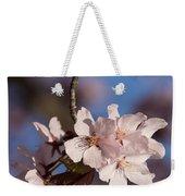 Pink Spring - Sunlit Blossoms And Blue Sky - Vertical Weekender Tote Bag