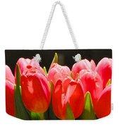 Pink Tulips In A Row Weekender Tote Bag