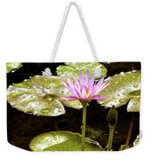A Waterlily Reflection Weekender Tote Bag