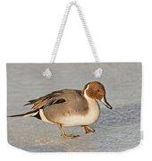 Pintail Duck Weekender Tote Bag