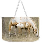 Pinto Mare And Filly Weekender Tote Bag