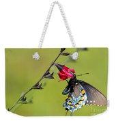 Pipevine Swallowtail Weekender Tote Bag