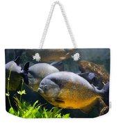 Piranha Weekender Tote Bag
