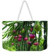 Pitaya Fruit Trees Weekender Tote Bag
