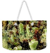 Pixie Cup Lichenscape Weekender Tote Bag