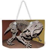 Placerias Fossil Weekender Tote Bag