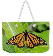 Plant Milkweed And Save The Monarch Butterfly Weekender Tote Bag
