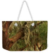 Plantation Oak Trees Weekender Tote Bag