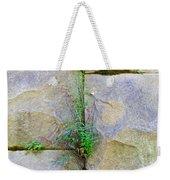 Plants In The Brick Wall Weekender Tote Bag