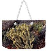Plants On A Landscape, Anza Borrego Weekender Tote Bag
