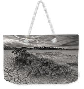 Plants On The Alvord Desert Weekender Tote Bag