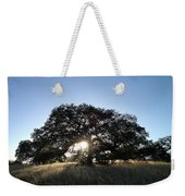 Plateau Oak Tree Weekender Tote Bag