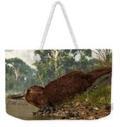 Platypus On The Shore Weekender Tote Bag