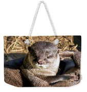 Play Time For Otters Weekender Tote Bag