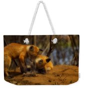Play Time Weekender Tote Bag by Thomas Young
