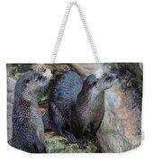 Playful Buddies Weekender Tote Bag