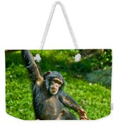 Playful Chimp Weekender Tote Bag